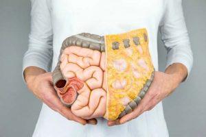 masti u organizmu